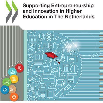 HEInnovate Netherlands Report